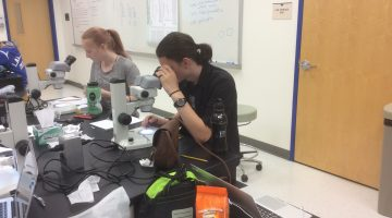 students looking into microscopes for science class INT 188