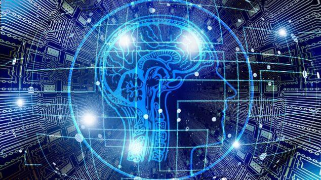 image of human brain illuminated