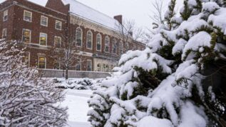 snow on pine trees in front of UMaine buildings