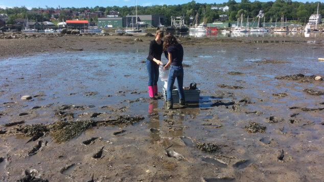 INT 188 students in mud flats